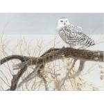 Puzzle  Cobble-Hill-85031 Pièces XXL - Fallen Willow Snowy Owl