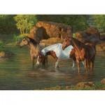 Puzzle  Cobble-Hill-85051 Pièces XXL - Horse Pond