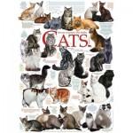 Puzzle   Cat Quotes