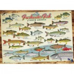 Puzzle   Freshwater Fish of North America