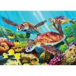 Puzzle   Molokini Sea