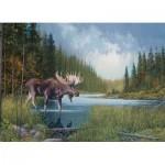 Puzzle   Moose Lake