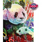 Puzzle   Rainbow Panda