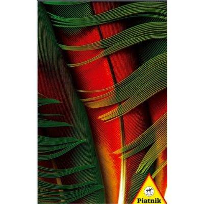 Puzzle Piatnik-5674 Plume de perroquet