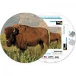 Pigment-and-Hue-RBISON-41226 Puzzle Rond déjà assemblé - Bison américain