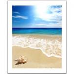 Pintoo-H1335 Puzzle en Plastique - Coquillage sur la plage