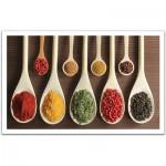 Pintoo-H1469 Puzzle en Plastique - Collection d'épices dans les spatules en bois