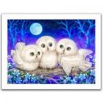 Pintoo-H1953 Puzzle en Plastique - Kayomi - Owl Triplets