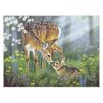 Pintoo-H2067 Puzzle en Plastique - Abraham Hunter - Forest Friends