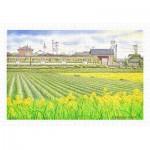 Pintoo-H2139 Puzzle en Plastique - Tadashi Matsumoto - Early Summer