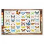 Puzzle en Plastique - Beautiful Butterflies
