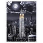 Puzzle en Plastique - Darren Mundy - Empire State Building