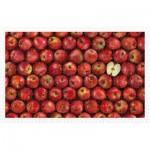 Puzzle en Plastique - Fruits - Apple