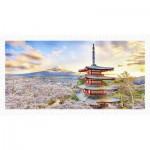 Puzzle en Plastique - Fuji Sengen Shrine, Japan