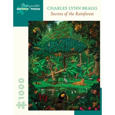 Puzzle Pomegranate-AA1061 Charles Lynn Bragg - Secrets of the Rainforest, 1991