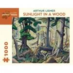 Puzzle   Arthur Lismer - Sunlight in a Wood, 1930