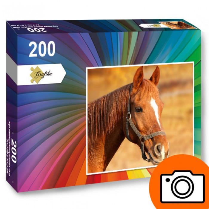Puzzle Photo personnalisé 200 pièces
