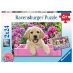 Ravensburger-05029 2 Puzzles - Amis tout doux