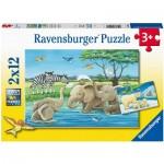 Ravensburger-05095 2 Puzzles -  Bébé Animaux du Monde Entier