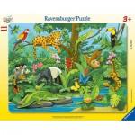 Ravensburger-05140 Puzzle Cadre - Animaux de la Forêt Tropicale