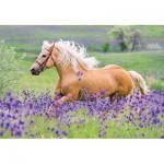 Ravensburger-05148 2 Puzzles - Chevaux