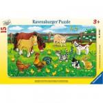 Ravensburger-06046 Puzzle cadre - Animaux de la ferme