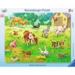 Ravensburger-06143 Puzzle Cadre - Mes Animaux Préférés