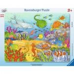 Ravensburger-06149 Puzzle Cadres - Joyeuses Créatures Marines