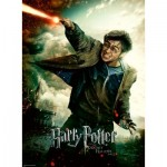 Puzzle  Ravensburger-12869 Pièces XXL - Harry Potter