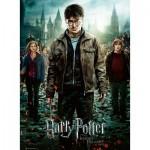 Puzzle  Ravensburger-12871 Pièces XXL - Harry Potter - Les Reliques de la Mort