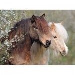 Puzzle  Ravensburger-12986 Pièces XXL - Horses