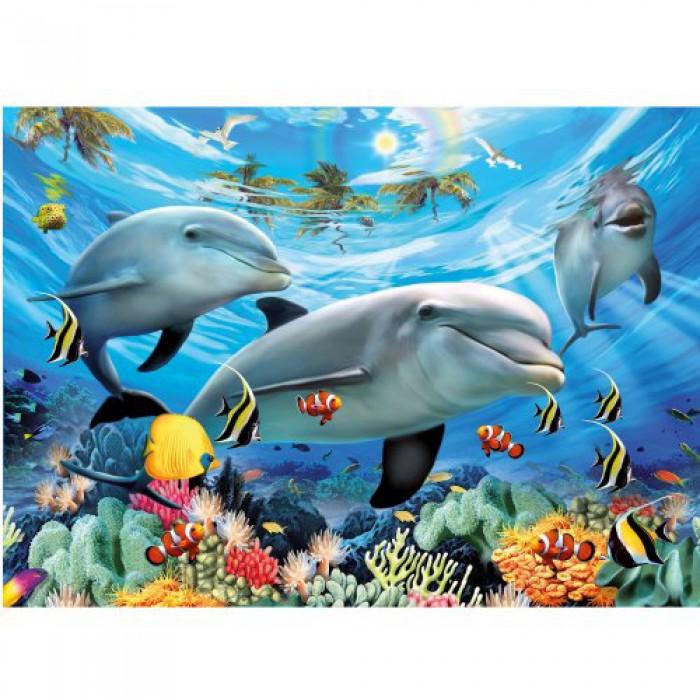 Le bal des dauphins