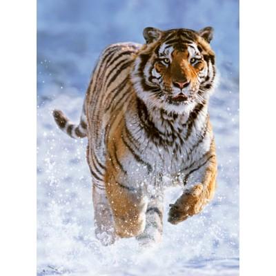 Puzzle Ravensburger-14475 Tigre dans la Neige