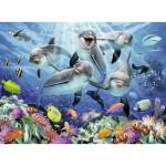 Puzzle  Ravensburger-14710 Dauphins dans la Barrière de Corail
