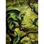 Puzzle  Ravensburger-14789 Dragon de la Forêt par Anne Stokes