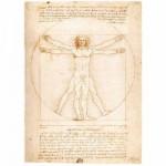 Puzzle  Ravensburger-15250 Léonard de Vinci : L'Homme de Vitruve