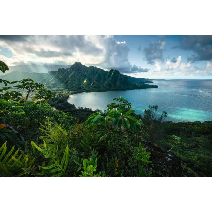 Vue sur Hawaï