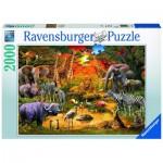 Puzzle  Ravensburger-16702 Rassemblement au Point d'Eau