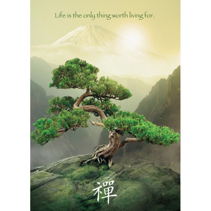 L'arbre Zen