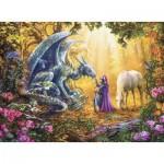 Puzzle   Dragon Whisperer
