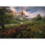 Puzzle   Nature Edition No 17 - Vallée de la Clarée