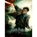 Puzzle   Pièces XXL - Harry Potter