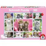 Puzzle  Schmidt-Spiele-56135 Chatons