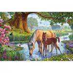 Puzzle  Schmidt-Spiele-56161 Chevaux dans le Ruisseau