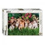 Puzzle  Step-Puzzle-73058 Famille de Chats