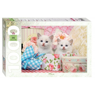 Puzzle Step-Puzzle-79100 Chatons