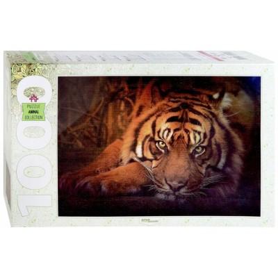 Puzzle Step-Puzzle-79142 Tigre de Sibérie