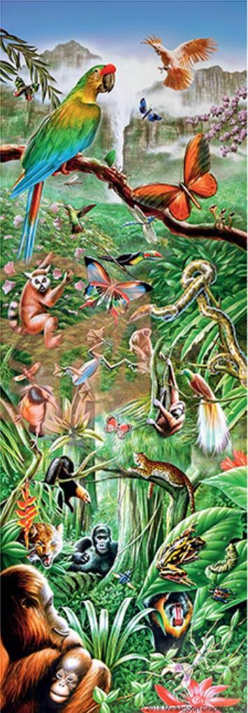 Puzzle Step-Puzzle-79407 Jungle