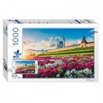 Puzzle  Step-Puzzle-79700 Mosquée Qolsharif
