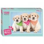 Puzzle  Step-Puzzle-83300 Studio Pets